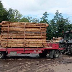 Holzarbeit . Holztransporte (1)