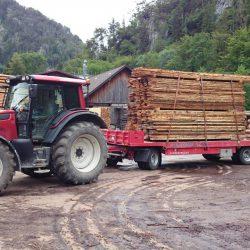 Holzarbeit . Holztransporte (3)