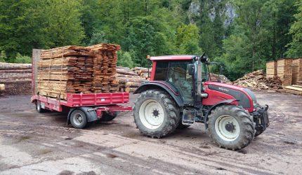 Holzarbeit . Holztransporte (2)